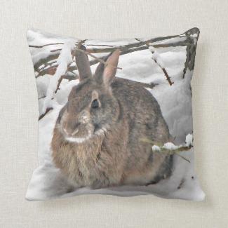 Bunny Seeking Shelter