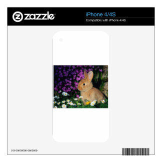 Bunny Skin For The iPhone 4S