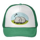 Bunny sleeping trucker hats