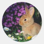 Bunny sticker 3
