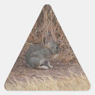 Bunny Triangle Sticker