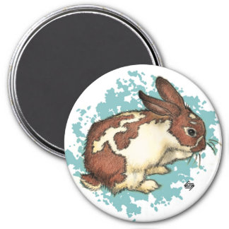 Bunny washing his face with blue magnet