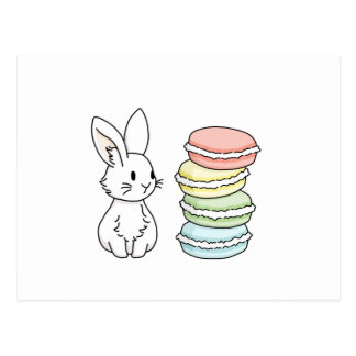 Bunny with Macaroons Postcard