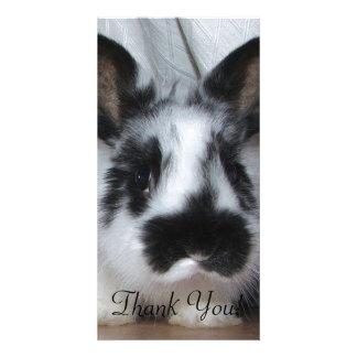 Bunny With Panda-Like Markings Photo Card
