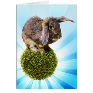 BunnyLuv Greeting Card Featuring Twink