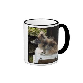 Bunnypig mug