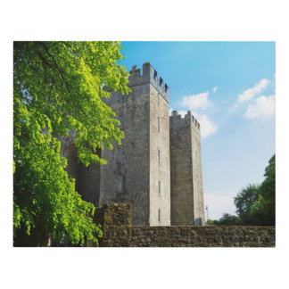 Bunratty Castle Panel Wall Art