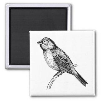 Bunting Bird Art Refrigerator Magnets