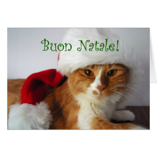 Buon Natale - Cat Wearing Santa Hat Greeting Cards
