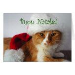 Buon Natale - gato que lleva el gorra de Santa Tarjeton