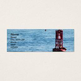 Buoy Sea Lions Mini Business Card