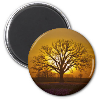 Bur Oak Sunset 2 Inch Round Magnet