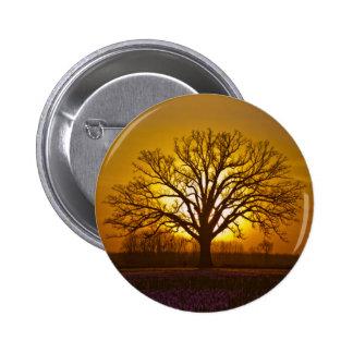 Bur Oak Sunset Pinback Buttons