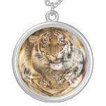 Burbuja del tigre pendiente