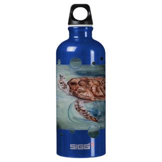 Burbujas de la tortuga de mar verde