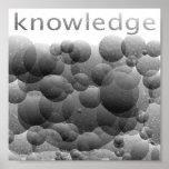 burbujas del conocimiento poster