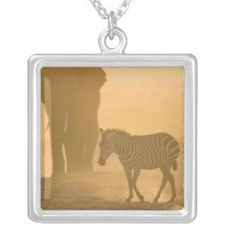 Burchelli de la cebra común, del Equus, y elefante Pendiente Personalizado