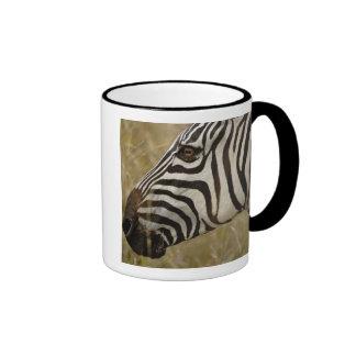 Burchelli's Zebra, Equus burchellii, Masai Ringer Mug