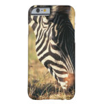 Burchell's zebra barely there iPhone 6 case
