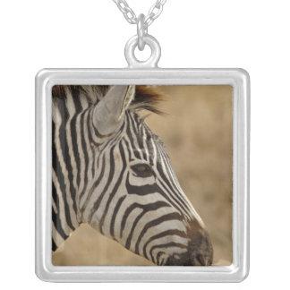Burchell's Zebra, Equus burchellii, Ngorongoro Square Pendant Necklace