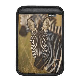 Burchell's Zebra in tall summer grass, Masai iPad Mini Sleeves