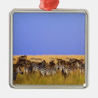Burchell's Zebras and Wildebeest in tall Metal Ornament