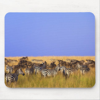 Burchell's Zebras and Wildebeest in tall Mouse Pad