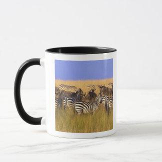 Burchell's Zebras and Wildebeest in tall summer Mug