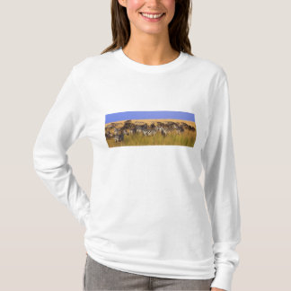 Burchell's Zebras and Wildebeest in tall summer T-Shirt