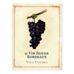 Burdeos de las uvas de vino rojo tarjetas postales