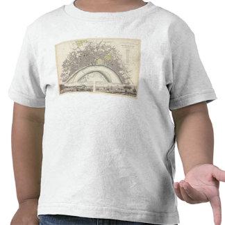 Burdeos Camiseta