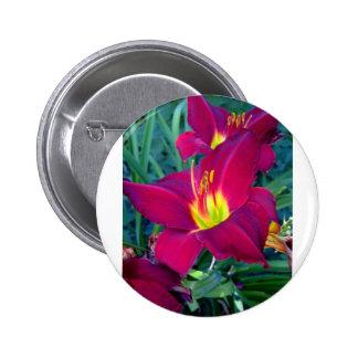 Burgandy Lilies Pinback Button