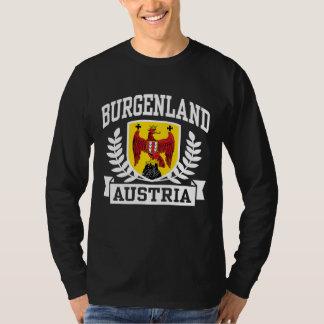 Burgenland Austria Playera