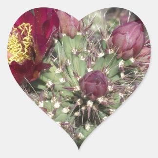 Burgundy Cactus Flowers Heart Sticker