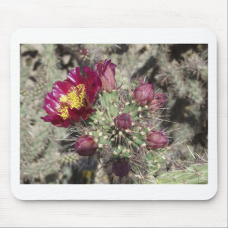 Burgundy Cactus Flowers Mouse Pad