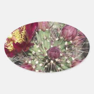 Burgundy Cactus Flowers Oval Sticker