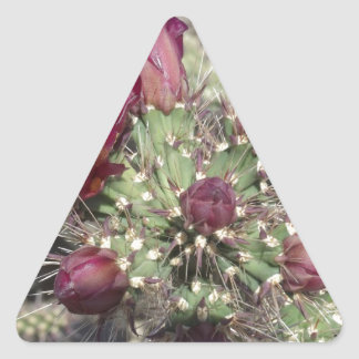 Burgundy Cactus Flowers Triangle Sticker