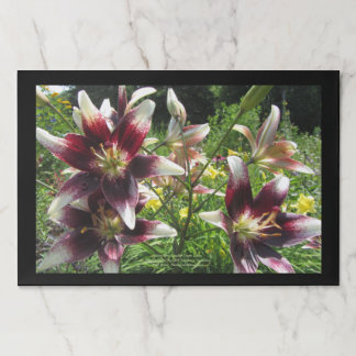 Burgundy Creme Asiatic Lilies, Yellow Daylilies Paper Placemat