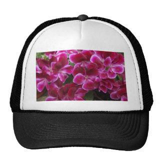 Burgundy Geranium Trucker Hat
