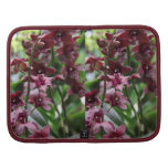 Burgundy Orchids Planners