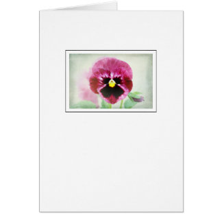 Burgundy Red Pansy Flower Card