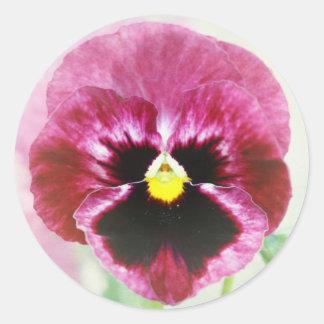 Burgundy Red Pansy Flower Classic Round Sticker