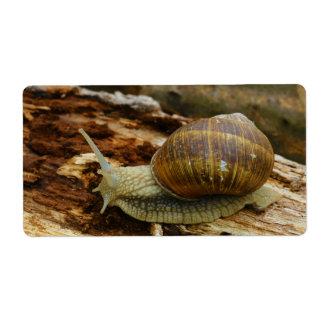 Burgundy Roman Edible Snail Helix Pomatia Shipping Label
