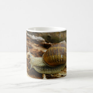 Burgundy Roman Edible Snail Helix Pomatia Coffee Mug
