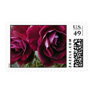 Burgundy roses - floral postage