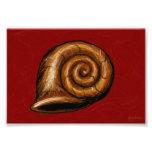 Burgundy Snail Tablet Sketch Photo