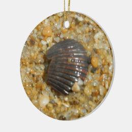 Buried Seashell Ceramic Ornament