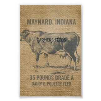 burlap cow feed sack poster