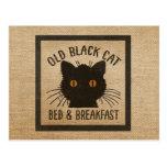 Burlap Old Black Cat Bed Breakfast Postcard