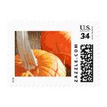 Burlap Pumpkin Stamps